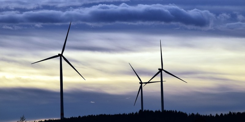 Wind lobby ignores consequences of 'renewable' energy