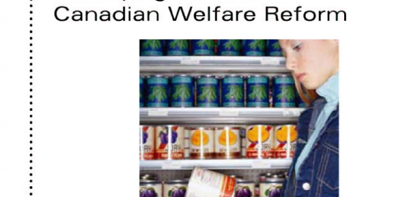 the welfare reforms in the united states Journal of economic literature vol xl (december 2002) pp 1105–1166 evaluating welfare reform in the united states rebecca m blank1 1105 1 introduction o ver the 1990s the united states fun- damentally changed the structure of its.