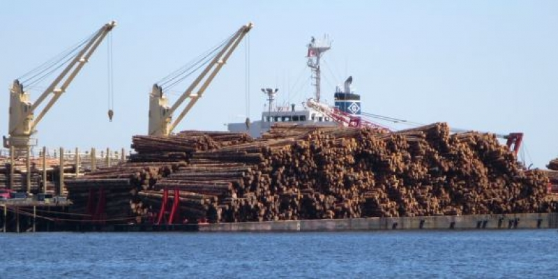 Log Export Policy for British Columbia
