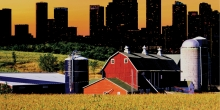 An Economic Analysis of Rural Land Use Policies in Ontario